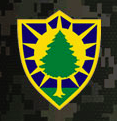 251st Engineer Company (Sapper)
